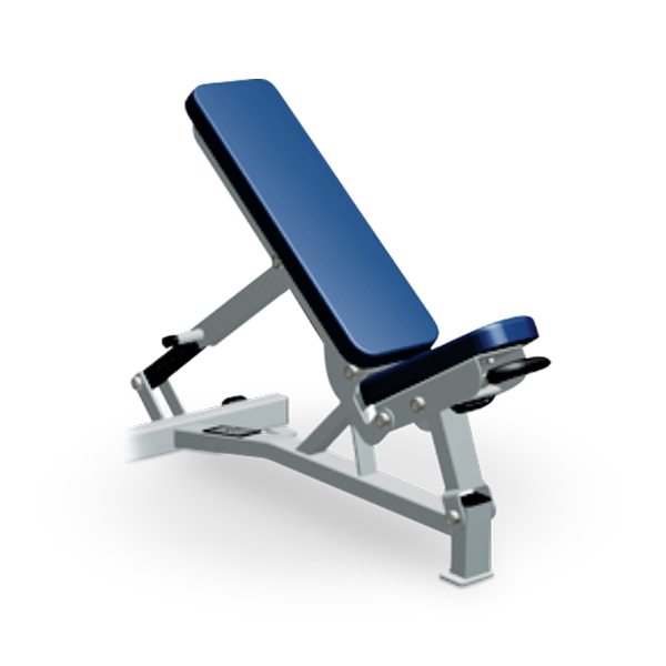 Hammer Strength Benches and Racks – Life Fitness